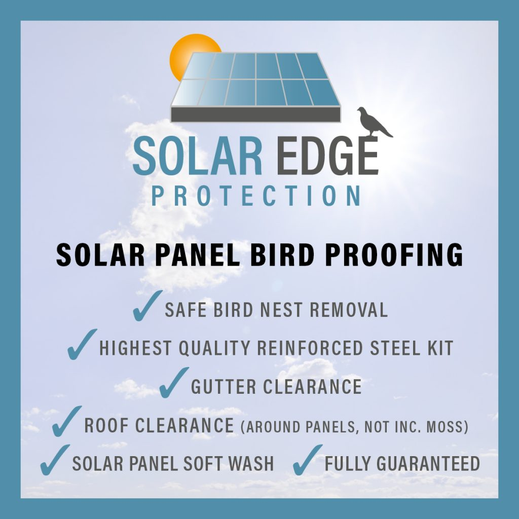 solar panel bird proofing Dundee