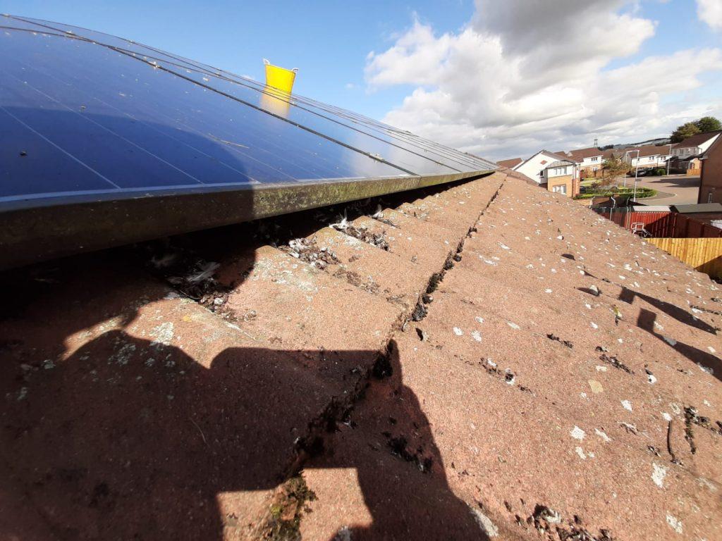 cleaning solar panels Scotland